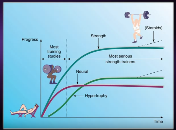 Strength training over time